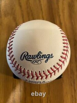 Shea Stadium Final Season Official major League Baseball
